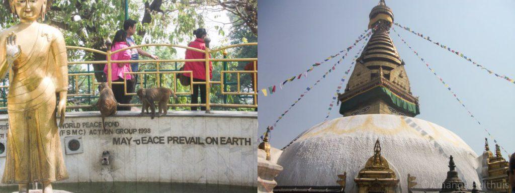 Apentempel Swayambhunath Kathamandu