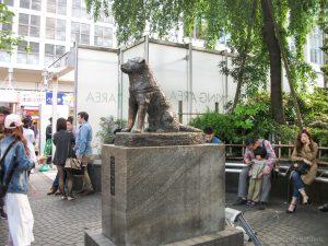 Hachiko Standbeeld Tokio
