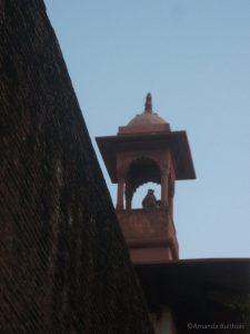 Aap bij Taj Mahal