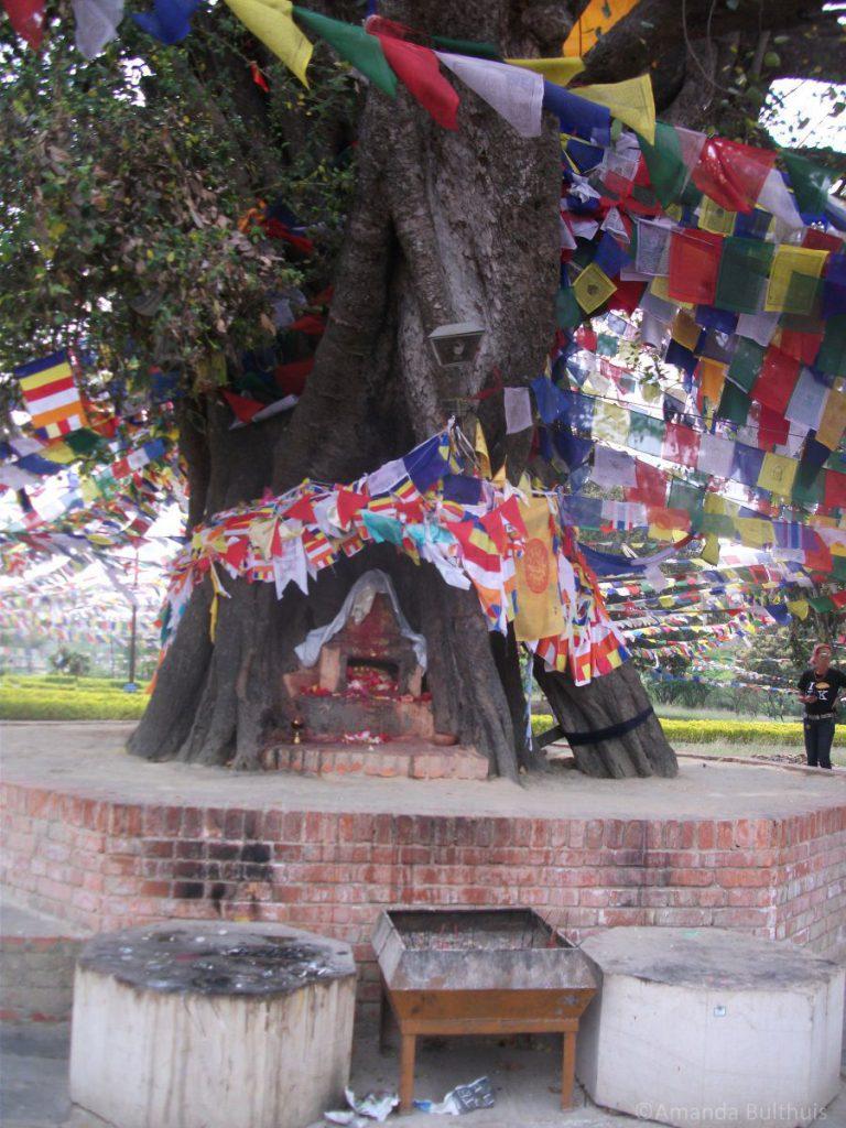 Geboorteplaats Budhha, Lumbini - Nepal