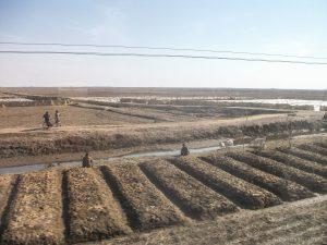 Platteland Noord-Korea