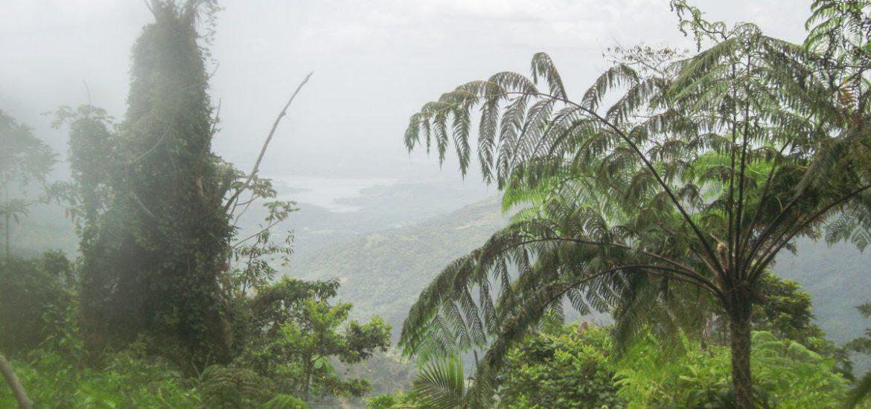 Sierra Maestra Cuba