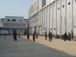 Volleybalveld voor medewerkers fertiliser factory