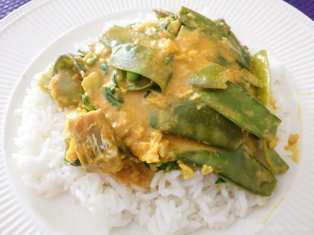 Thaise viscurry