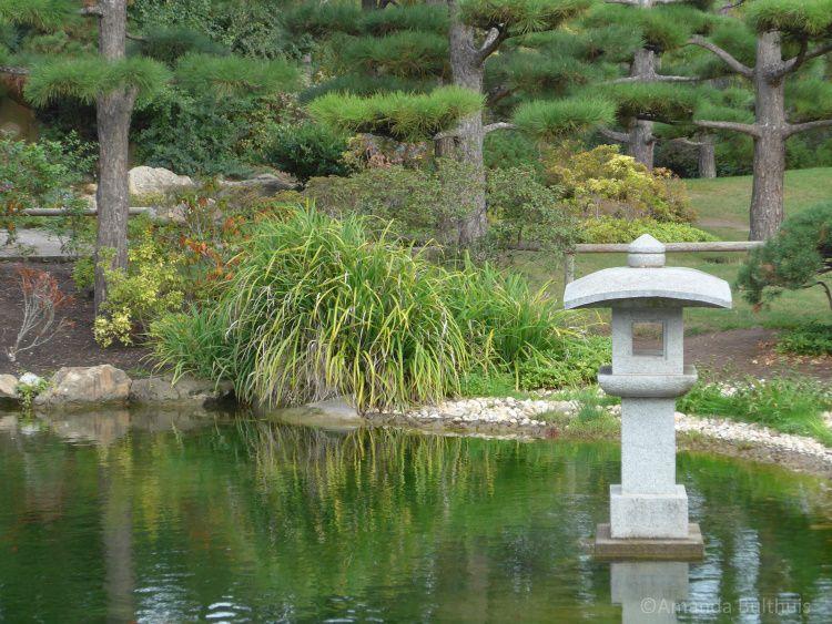 Japanese Garden Düsseldorf